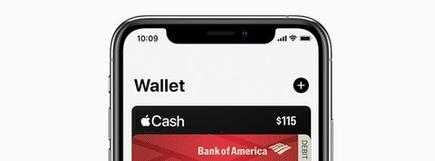 apple pay with MoonClerk 1