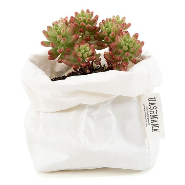 UASHMAMA Paper Bag Basic Small White
