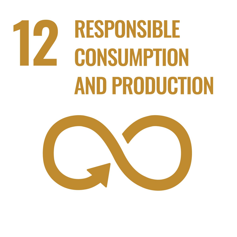 Duurzame consumptie en productie