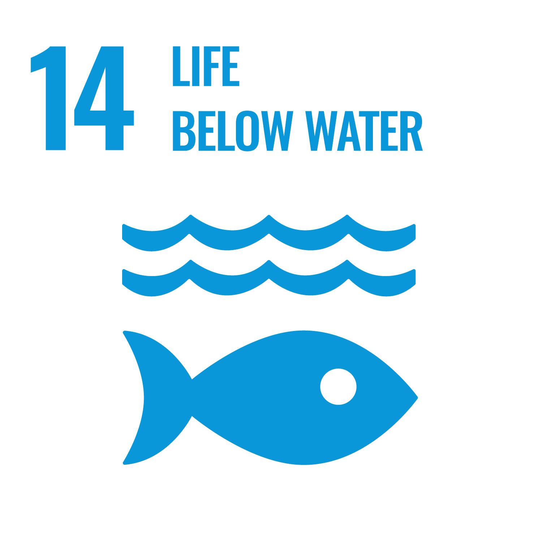 Bescherming van zeeën en oceanen