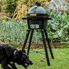 MiniMax Big Green Egg in a Foldable stand at the Allotment
