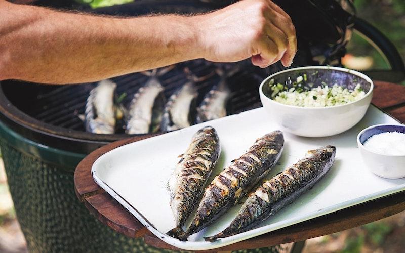 mackerel - cooking on the big green egg