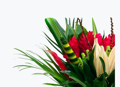 Pink Tropical Flower Bouquet - Image#2821160
