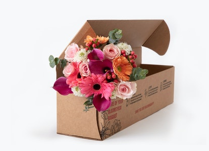 Pastel Bouquet - Peach and Pink Gerbera Bouquet - Image#2912548
