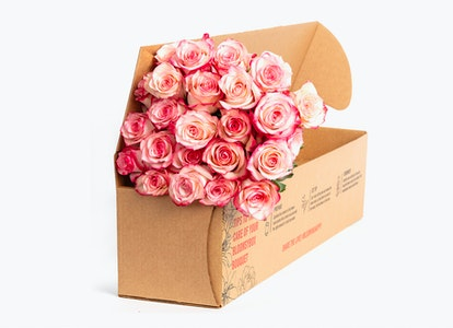 Pink Magenta & White Bi Color Rose Bouquet - Image#2983693