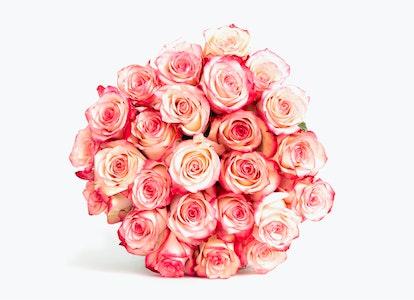 Pink Magenta & White Bi Color Rose Bouquet - Image#2984051