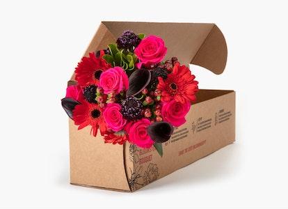Wild Berries Bouquet - Red Gerber - Black Mini Calla - Image#3348371