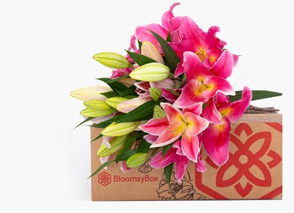Pink Oriental Lilies - Pink Oriental Lily Bouquet - Image#3430962