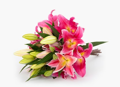 Pink Oriental Lilies - Pink Oriental Lily Bouquet - Image#3981452
