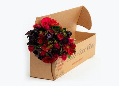 Wild Berries Premium - Image#4079847