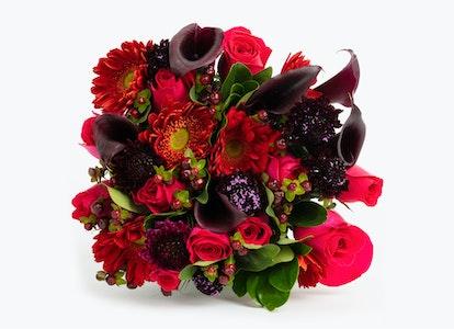 Wild Berries Premium - Image#4079859