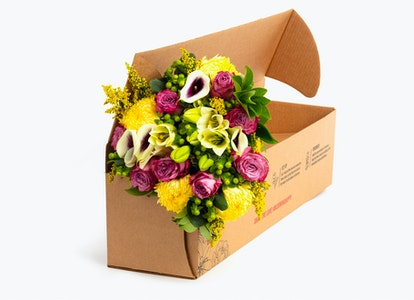 Sweet Summer Love Premium Bouquet for Delivery   BloomsyBox - Image#4580765