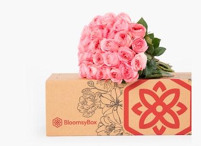 Pink Expression Rose