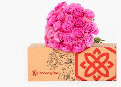 Pink Garden Rose - Pink Garden Rose Delivery | BloomsyBox - Image#4613961