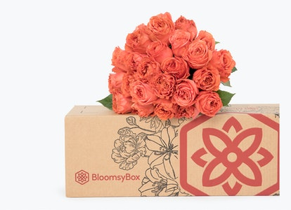 Coral Garden Rose - Coral Garden Rose Delivery   BloomsyBox - Image#4614032