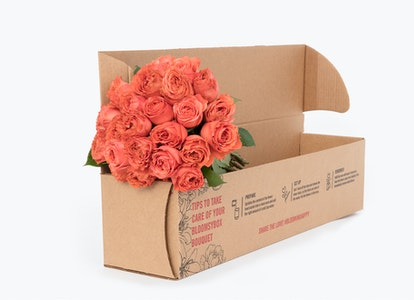 Coral Garden Rose - Coral Garden Rose Delivery   BloomsyBox - Image#4614033