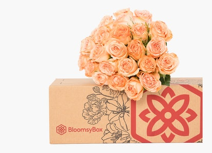 Peach Garden Rose - Peach Garden Rose Delivery | BloomsyBox - Image#4614385