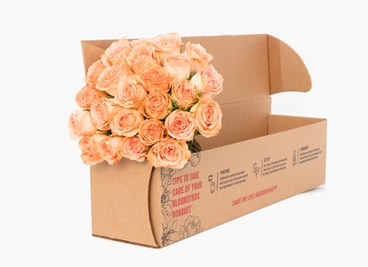 Peach Garden Rose - Peach Garden Rose Delivery | BloomsyBox - Image#4614386