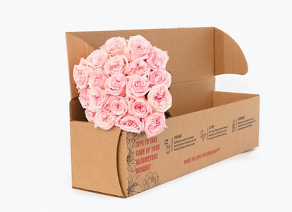 Pink Garden Rose - Pink Rose Delivery | BloomsyBox - Image#4614407