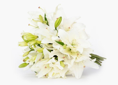 White Oriental Lily Delivery - Image#4728415