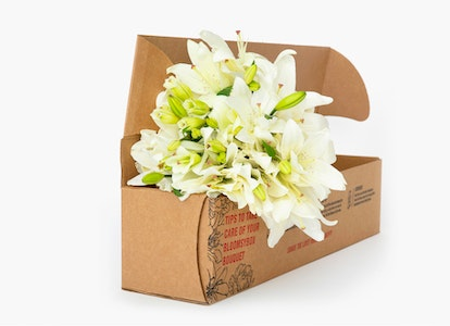 White Oriental Lily Delivery - Image#4728426