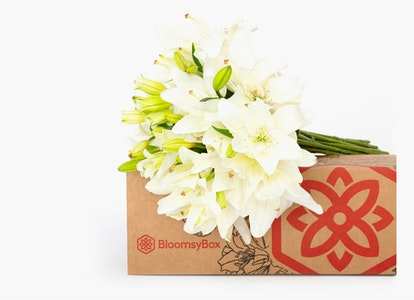 White Oriental Lily Delivery - Image#4728431