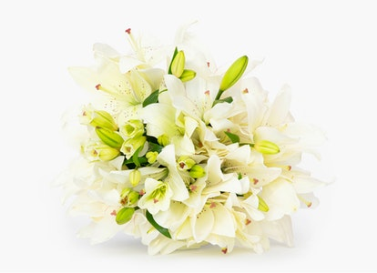 White Oriental Lily Delivery - Image#4728452
