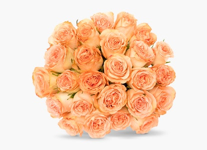 Peach Garden Rose - Peach Garden Rose Delivery | BloomsyBox - Image#4823921