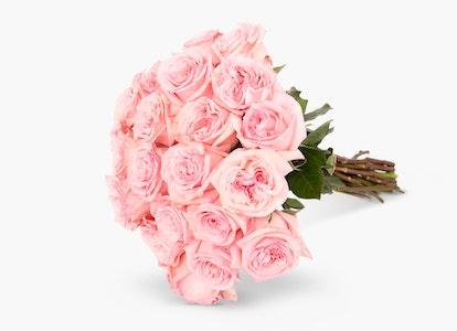 Pink Garden Rose - Pink Rose Delivery | BloomsyBox - Image#4827367