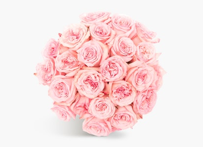 Pink Garden Rose - Pink Rose Delivery | BloomsyBox - Image#4827373