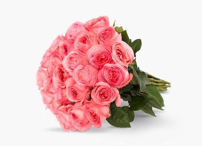 Pink Garden Rose - Pink Garden Rose Delivery   BloomsyBox - Image#4828392