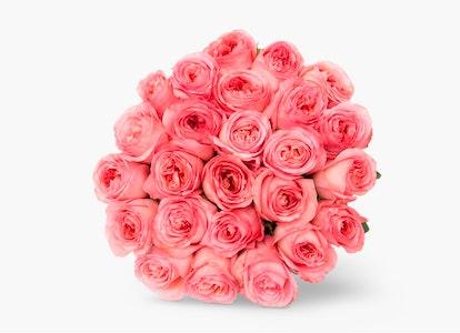 Pink Garden Rose - Pink Garden Rose Delivery   BloomsyBox - Image#4828400