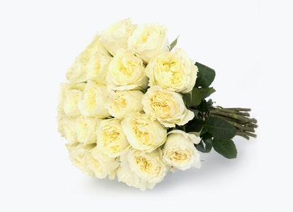 White Garden Rose - White Garden Rose Delivery | BloomsyBox - Image#4855253