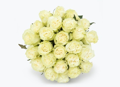 White Garden Rose - White Garden Rose Delivery   BloomsyBox - Image#4855887
