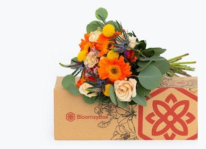 Bright Orange Daisies-Celebration Bouquet | BloomsyBox - Image#7510989