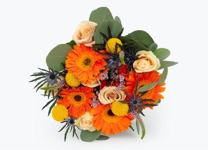 Bright Orange Daisies-Celebration Bouquet | BloomsyBox - Image#7510991