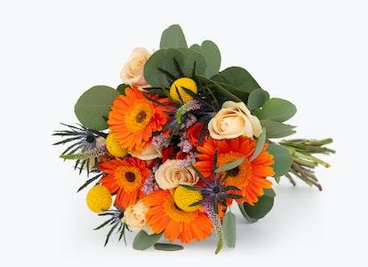 Bright Orange Daisies-Celebration Bouquet | BloomsyBox - Image#7510992