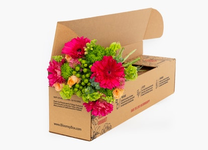 Pink Daisy Bouquet - Mother's Day Flower Delivery | BloomsyBox - Image#8632021
