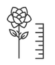 length of the stem icon