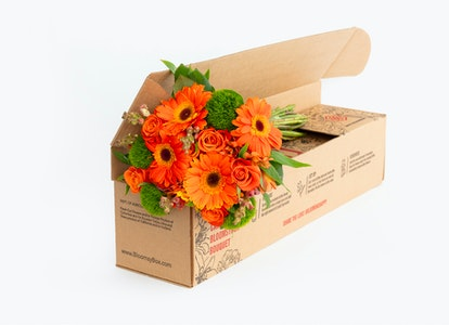 So-Long-to-Summer Sunflowers box angled