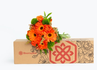 So-Long-to-Summer Sunflowers box front