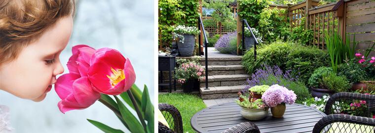 scented patio