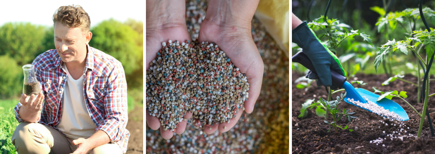 Understanding fertilizers and putting them to work in your soil