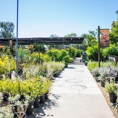 Plant walkway