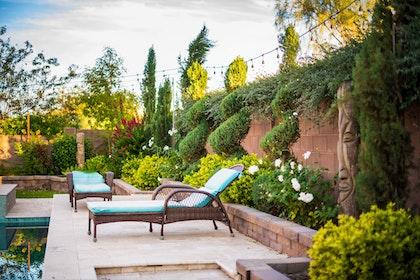 inspiration_lush_az_backyard_patio_by_pool_chaise_lounge_roses_bougainvillea_hl