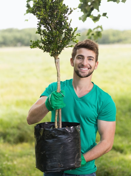Man holding young tree that is ready to plant into ground