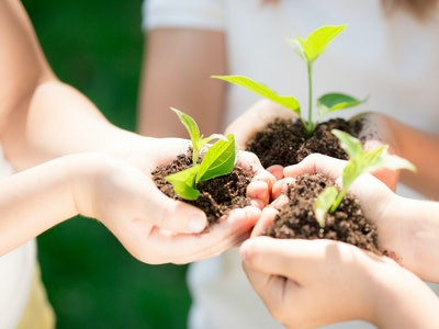 children holding dirt with plants in them in front of them
