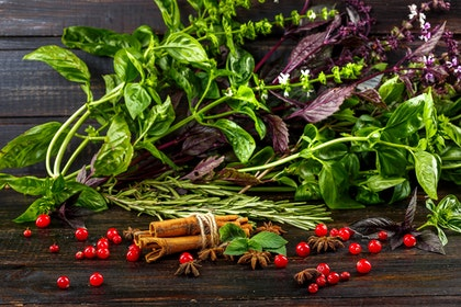 An assortment of fresh herbs on a wood table