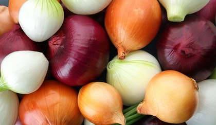 Red, white, yellow and green onions bulbs mixed together