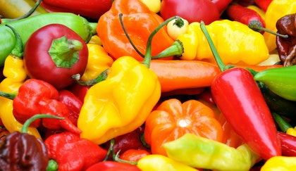 Various varieties of peppers, including jalapenos, sweet, bell, habanero, all piled together